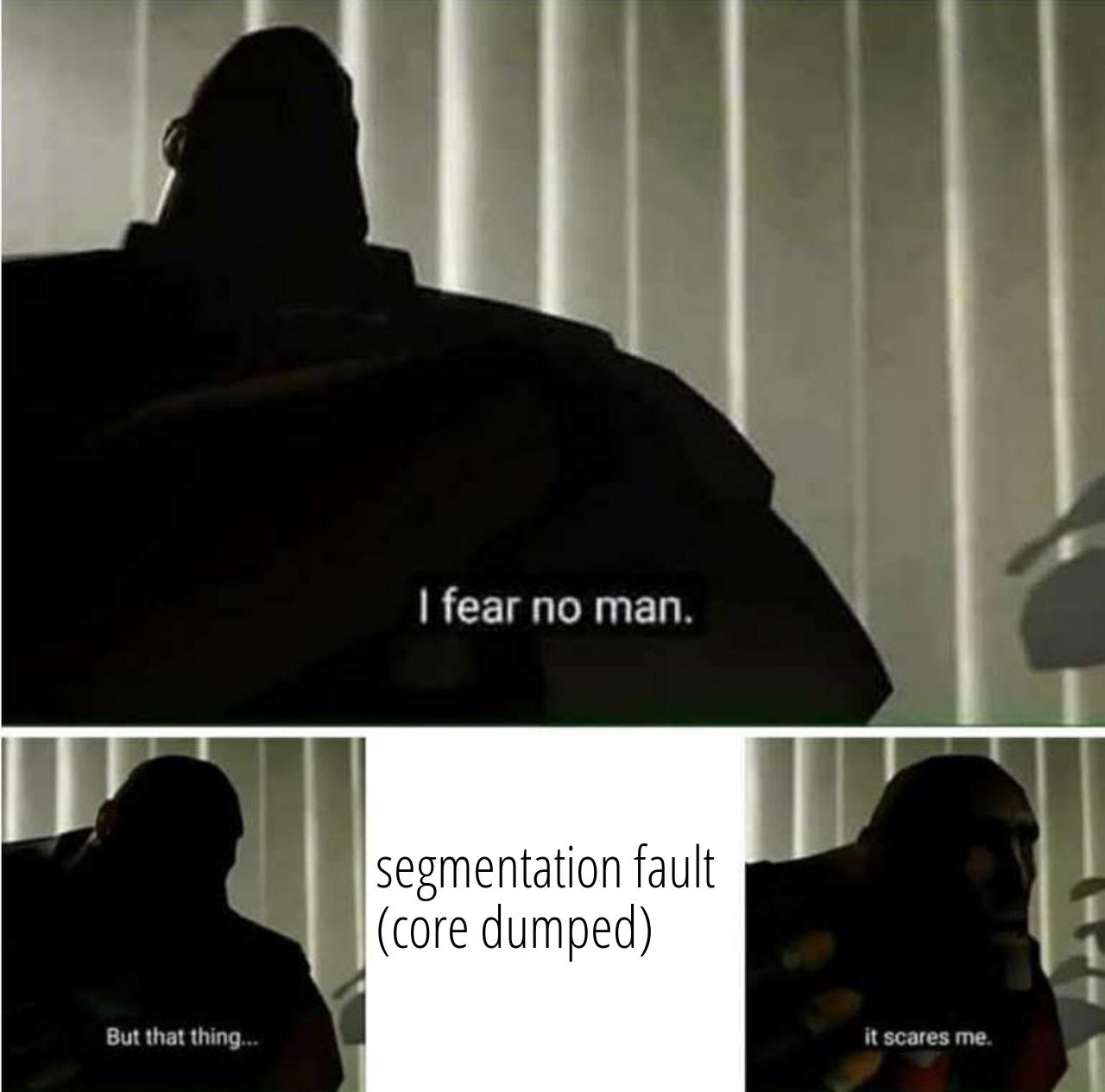 humor/fear_segfault.jpeg